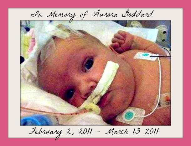 In Memory of Aurora