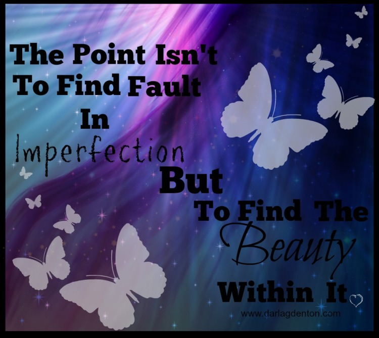 The Point Isn't To Find Fault in Imperfection but to find the beauty within it